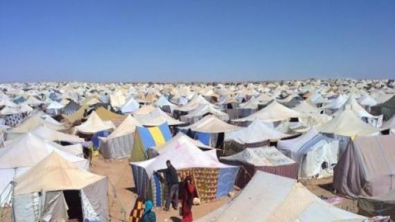 Les souffrances des populations séquestrées à Tindouf dénoncées devant la 4è commission de l'ONU