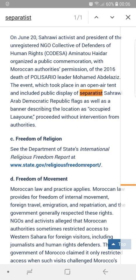 """Le drapeau de la """"RASD"""" qualifié de """"séparatiste"""" dans un rapport officiel"""