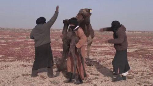 """""""رجال الصحراء"""".. فيلم جديد يتطرق إلى ثقافة البدو بالصحراء المغربية"""