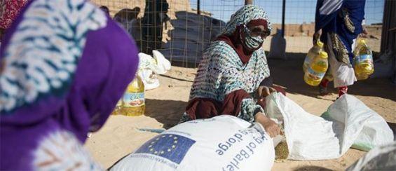 Un eurodéputé alerte sur le détournement des aides par le Polisario et la taxe imposée par Alger   .