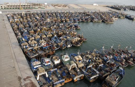Une forte dynamique du port de pêche de Laâyoune