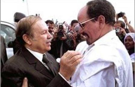 خلافات سياسية بين البوليساريو والجزائر وراء منع مليشيات البوليساريو من ولوج المنطقة العازلة