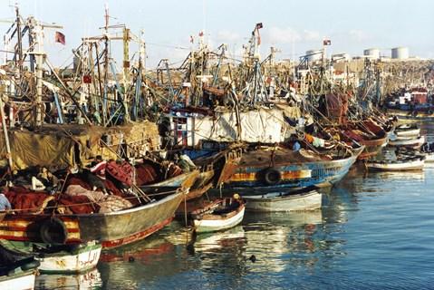 Maroc-UE/Pêche.