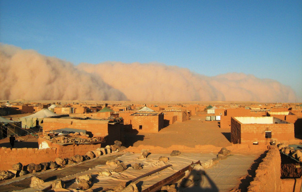 """""""Tens of thousands of Sahrawi refugees are effectively being held hostage in sweltering camps in Algeria under the tight control of those who claim to be their champions, the Polisario Front,"""" says Robert M. Holley."""