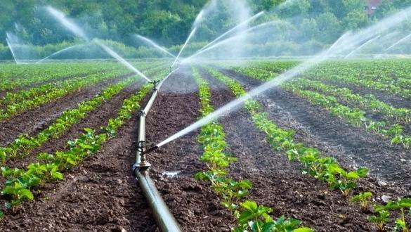Dakhla: 2 milliards de dirhams pour un projet d'irrigation
