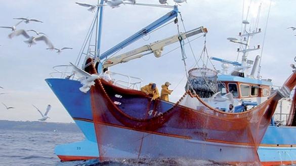 بعد روسيا.. الولايات المتحدة تبدي اهتمامها بالصيد البحري في الصحراء