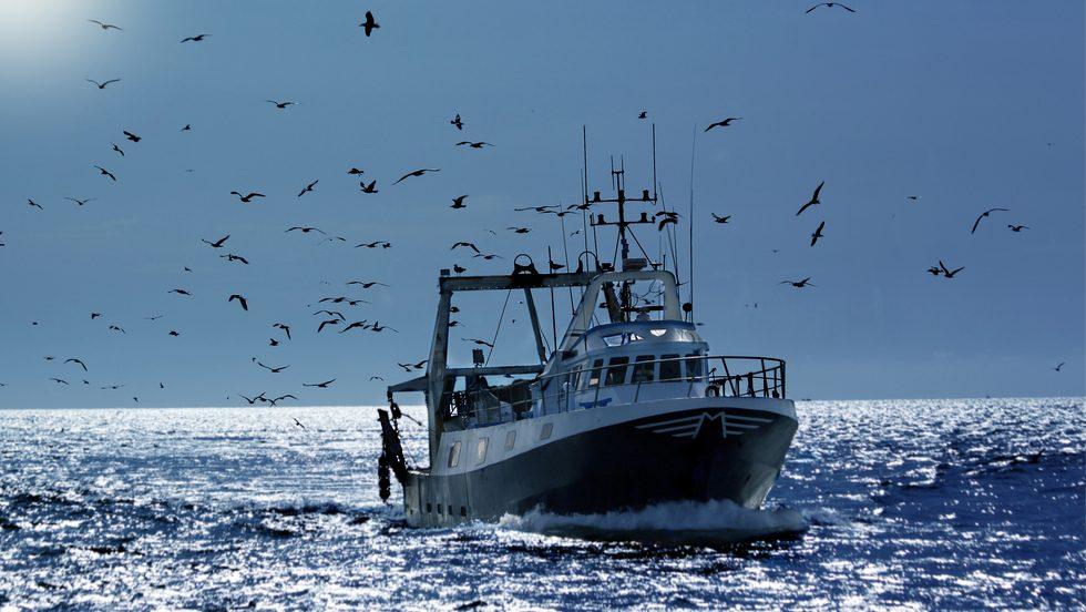 Région de Dakhla: Quelque 600.000 tonnes de capacité de pêche