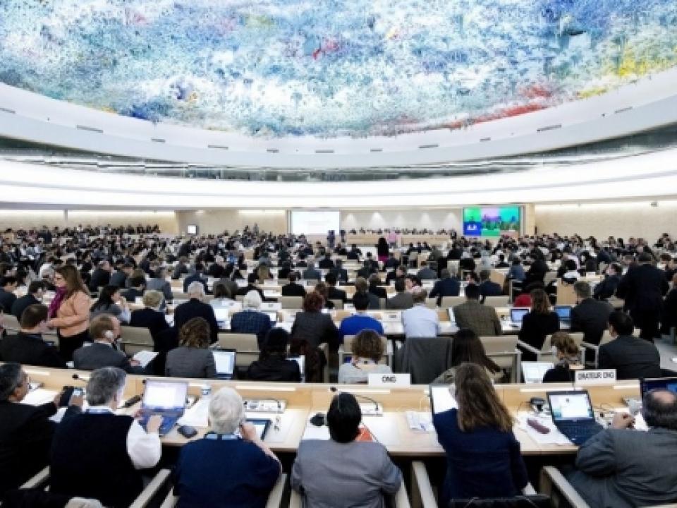 الصحراء .. سنة حافلة بالنجاحات الدبلوماسية للمغرب في الأمم المتحدة