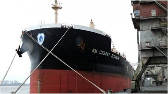 Pretoria, Polisario's Ally, Seizes New Zealand-Bound Vessel Carrying Moroccan Phosphate Cherry Blossom